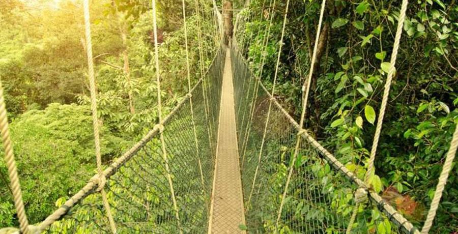 سفر به مالزی و جاذبه های توریستی آن