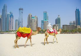 هزینه سفر به دبی - کانون آسمان خراش های شگفت انگیز