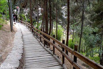 معرفی بهترین پارک های جنگلی تهران و آدرس دقیق آنها