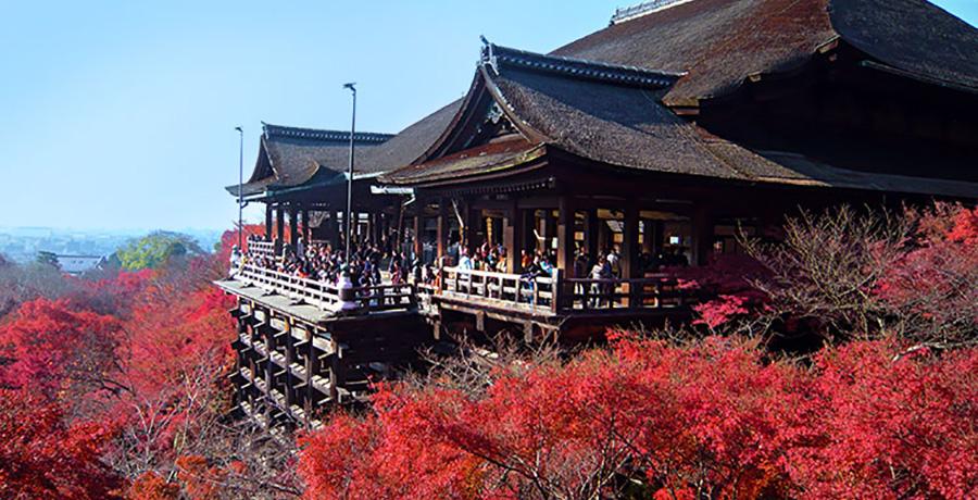 معبد گینکاکو جی یا معبد طلایی