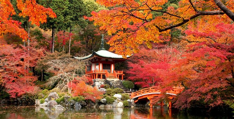 معبد سه گانه دایگو جی، معبدی نارنجی در کیوتو