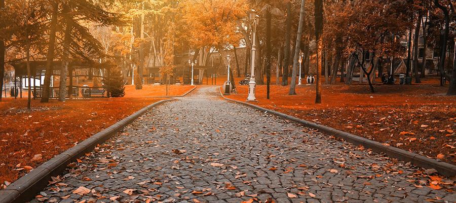 حراج پاییزی استانبول - خریدی به صرفه در فصل برگ ریزان