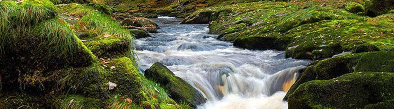 زیباترین رودخانه های ایران
